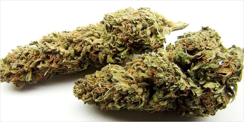 10 sativa ci 7 Worlds Most Famous Reggae Name Launches Own Weed Line