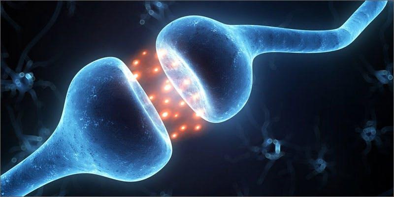 3 importance of cannabinoid receptors neuron Snoop Roasts Donald Trump