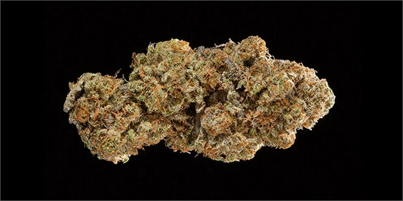 6 Check Out The Big Winners Of The SoCal Medical Cannabis Cup