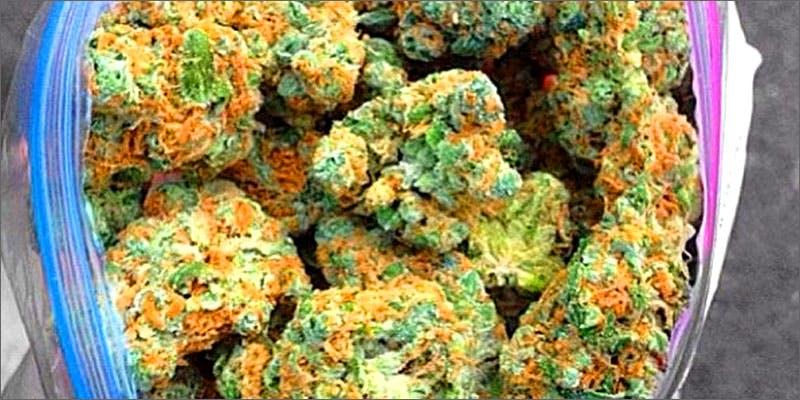 bagofweed Chevy Chase and Bill Murrays Marijuana Mission
