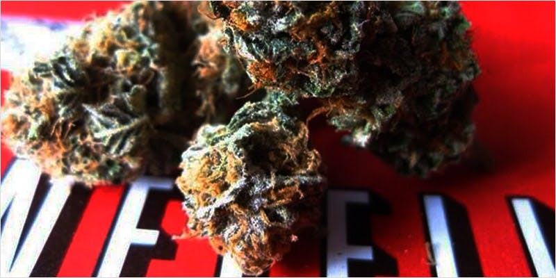 best weed combos CI 2 Worlds Most Famous Reggae Name Launches Own Weed Line