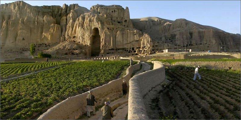 chepeast weed afganistan Marijuana And Pregnancy #2: Does Marijuana Have An Impact On Fertility?
