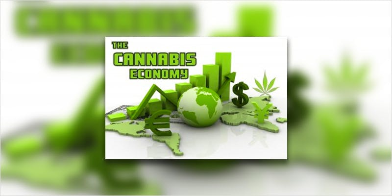 governor goes free ci 4 Chevy Chase and Bill Murrays Marijuana Mission