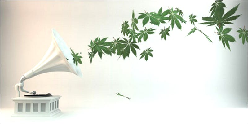 music Marijuana And Pregnancy #2: Does Marijuana Have An Impact On Fertility?
