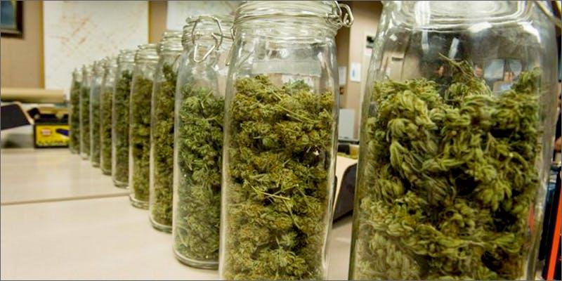storage Chevy Chase and Bill Murrays Marijuana Mission