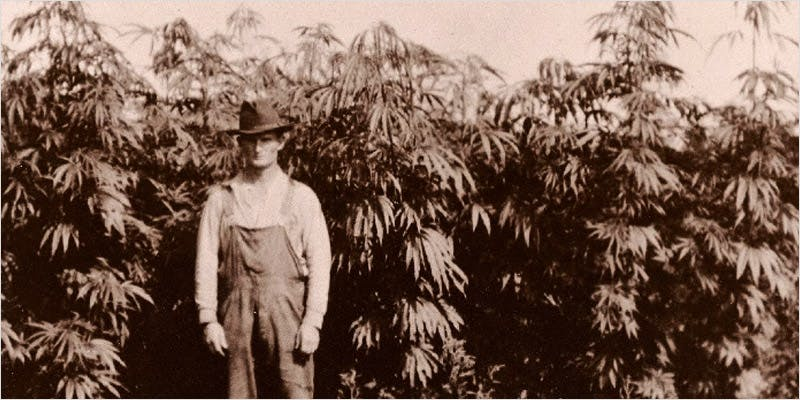 straining history CI 2 Worlds Most Famous Reggae Name Launches Own Weed Line