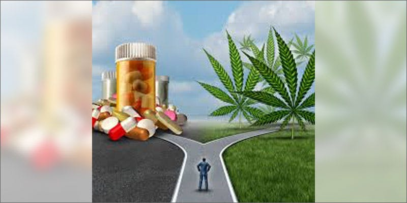 5 developments change mind prescriptionmeds vs mj These People Cried When High And The Reasons Are Hilarious