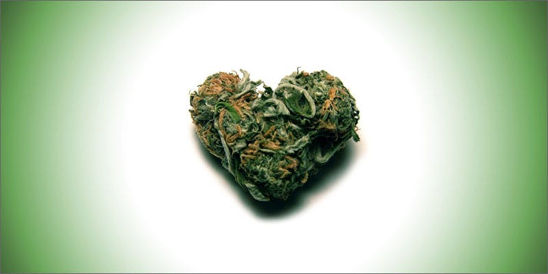 cannabis condoms weedheart Marijuana And Pregnancy #2: Does Marijuana Have An Impact On Fertility?