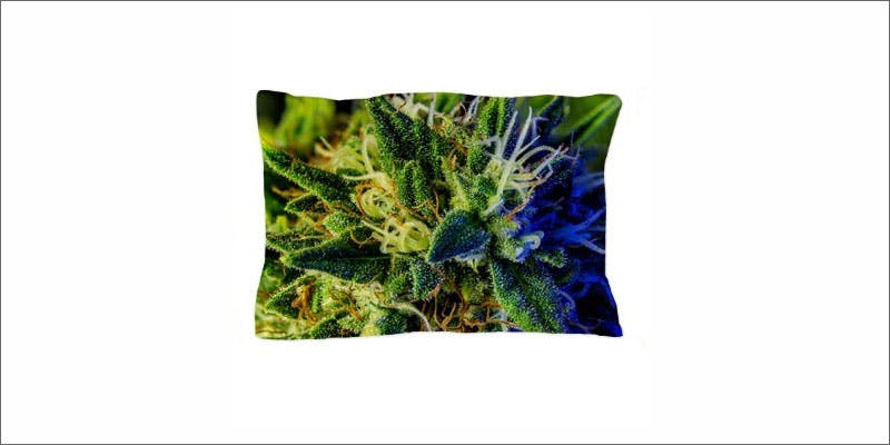 cannabis pillows 4 Restalk: Recycling Cannabis Waste Into Tree Free Paper Products