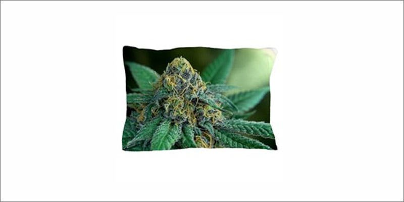 cannabis pillows 6 Restalk: Recycling Cannabis Waste Into Tree Free Paper Products