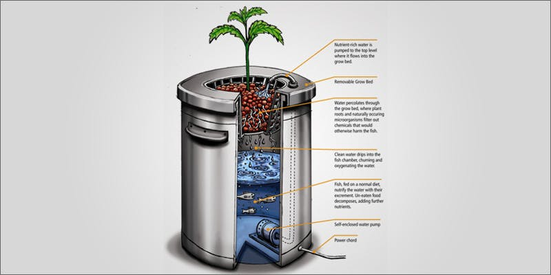 high science ci 4 Restalk: Recycling Cannabis Waste Into Tree Free Paper Products