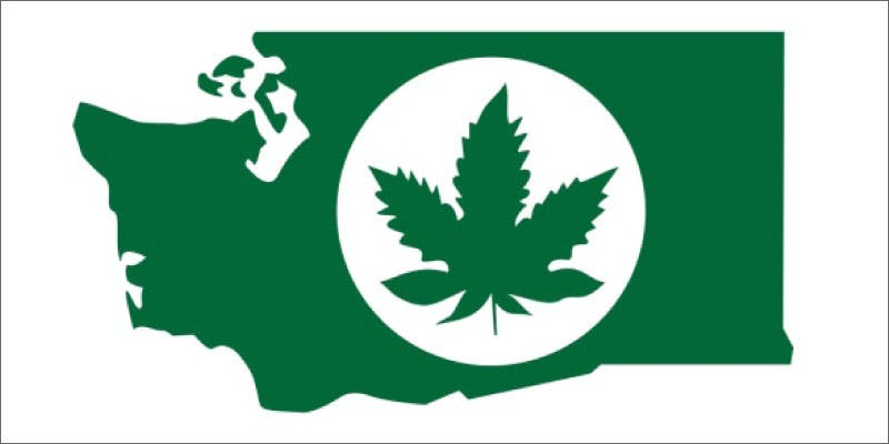 illegal mj wa state leaf Why Illegal Marijuana Production Plummeted In This State