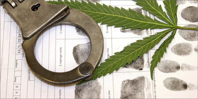 illegal Restalk: Recycling Cannabis Waste Into Tree Free Paper Products