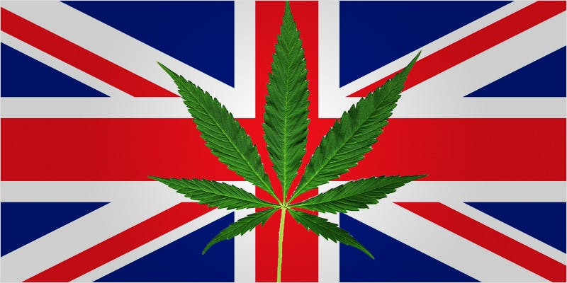 parliament shocker ci 1 Marijuana And Pregnancy #2: Does Marijuana Have An Impact On Fertility?
