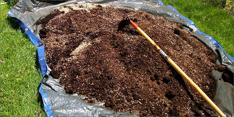soil2 Restalk: Recycling Cannabis Waste Into Tree Free Paper Products
