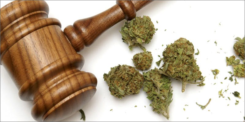 supreme court gavel buds This CEO Smoked Weed For 50 Years And Supports Cannabis Legalization