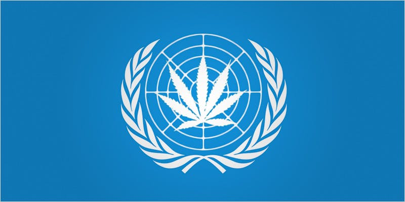 us gov ci 4 Will the U.S. Government Push for International Drug Decriminalization?