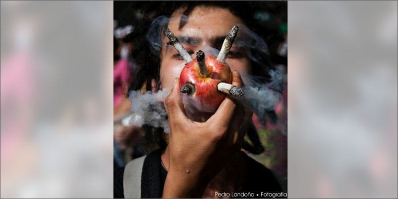 1 food pipes apple Heres 10 Epic Cannabis Moments Throughout History
