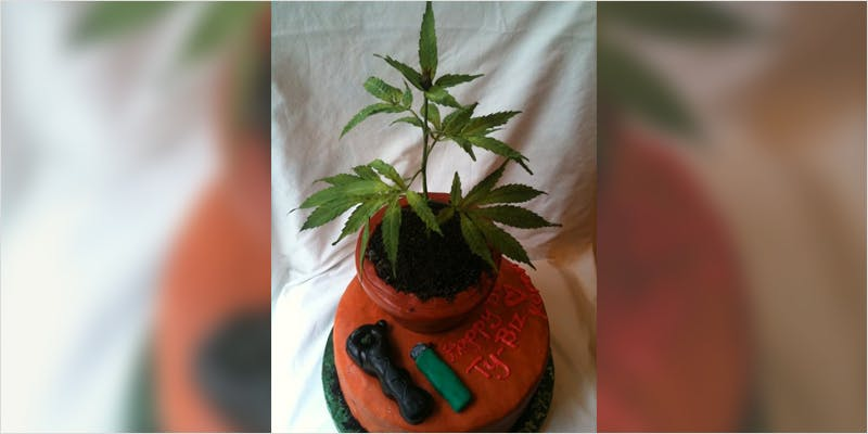 10 Cannabis Themed Cakes 7 Heres 10 Epic Cannabis Moments Throughout History