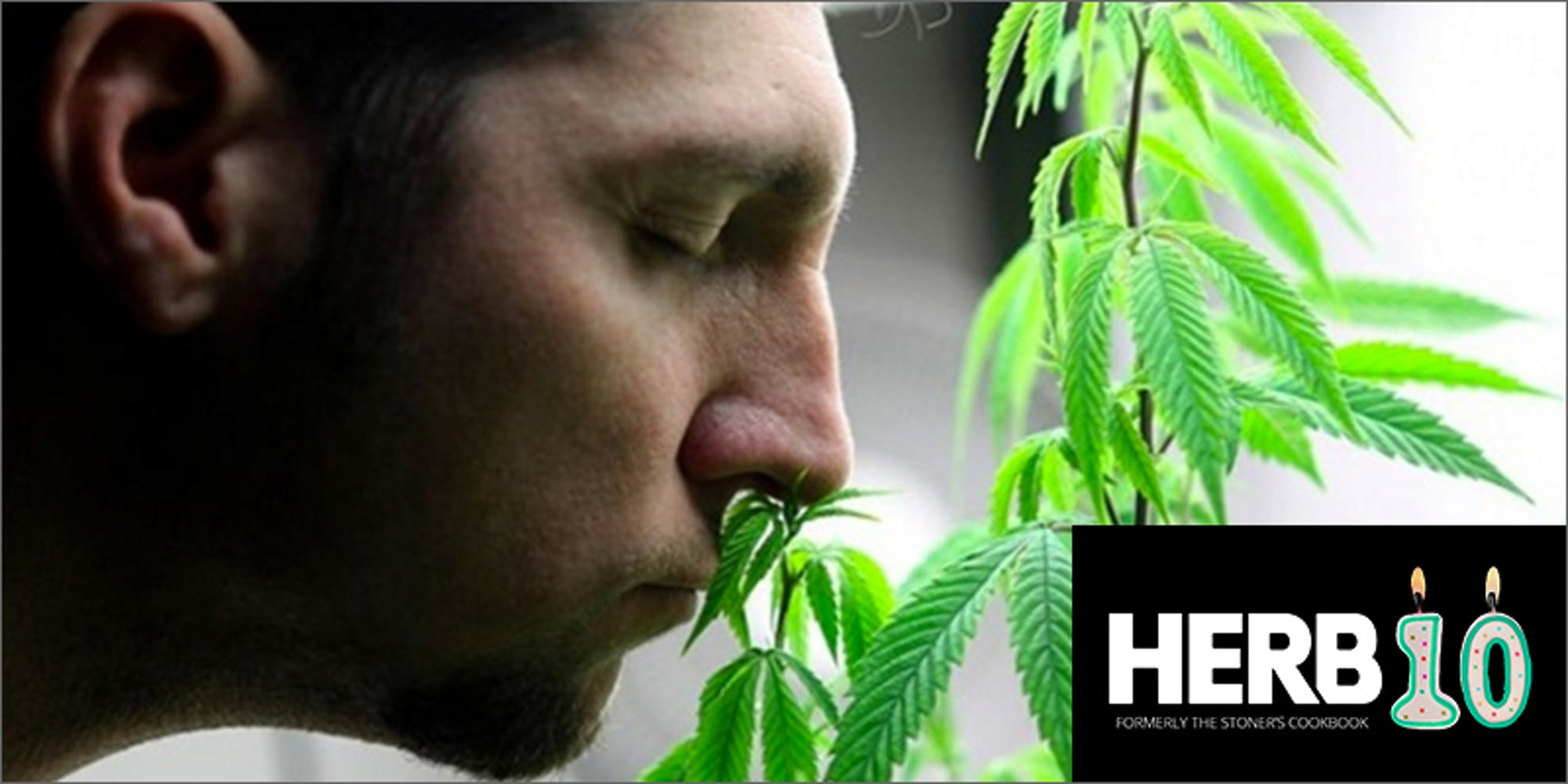 10 Things That Weirdly Smell Like Weed | Herb