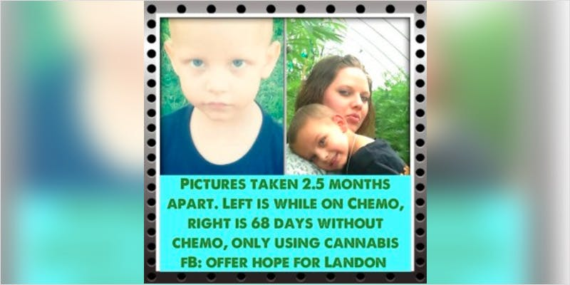 Oil Cures 3 Year Old 2 How Legalizing Cannabis In Europe Could Help Stamp Out Terrorism