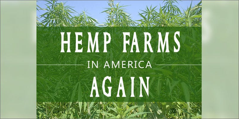 PA hemp cultivation american again Heres 10 Epic Cannabis Moments Throughout History