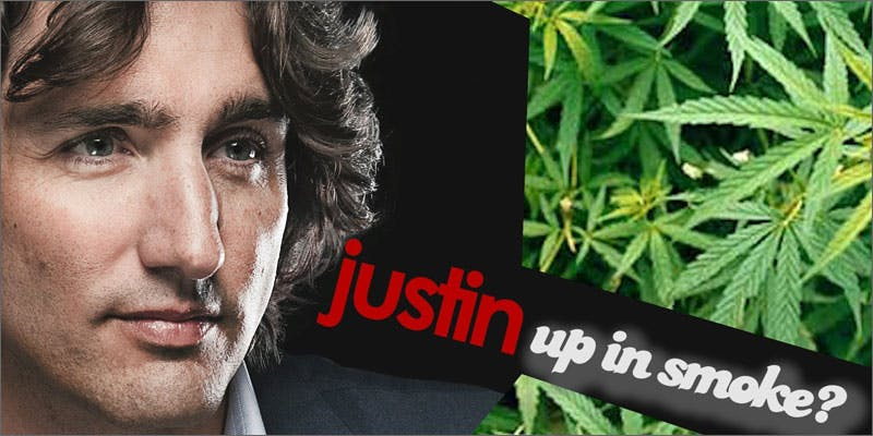 canada legalize trudeau leaves This CEO Smoked Weed For 50 Years And Supports Cannabis Legalization
