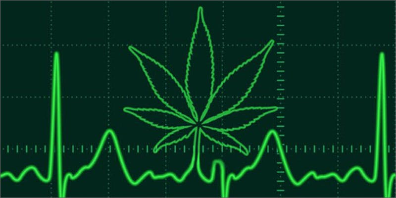 cannabis affects processing emotions heartbeat leaf Study Reveals Shocking Link Between Cannabis Use And Emotions