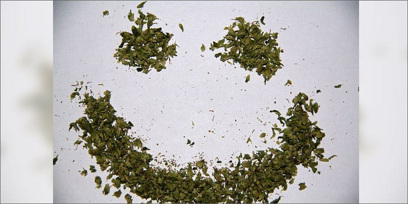 cannabis affects processing emotions weed smiley Study Reveals Shocking Link Between Cannabis Use And Emotions