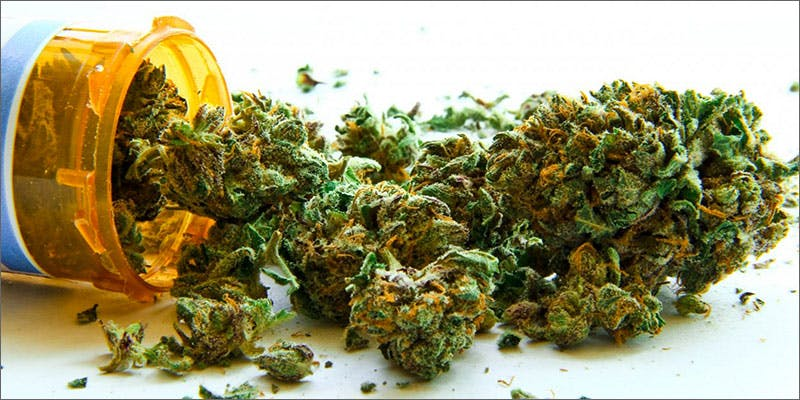 dea1 Heres 10 Epic Cannabis Moments Throughout History
