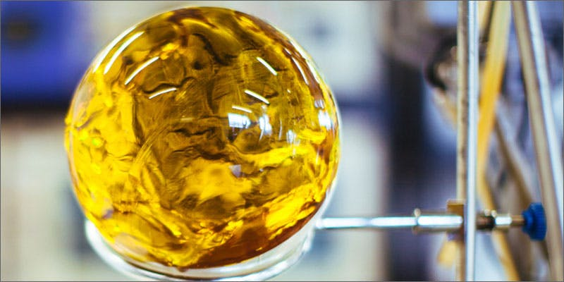 dragon ball orb created This CEO Smoked Weed For 50 Years And Supports Cannabis Legalization