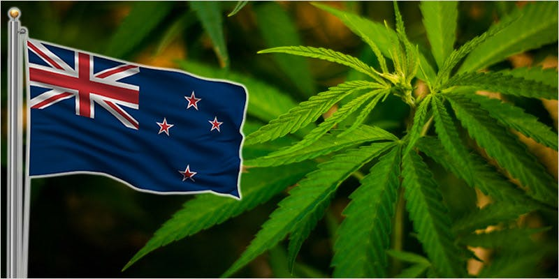 medical marijuana access