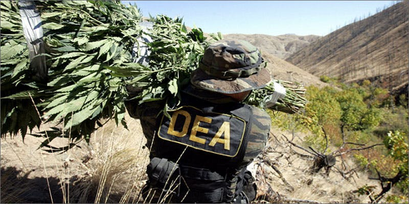 former dea supports cannabis haul Heres 10 Epic Cannabis Moments Throughout History
