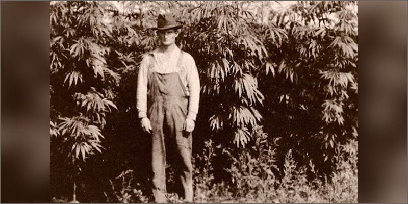 hr9 Heres 10 Epic Cannabis Moments Throughout History