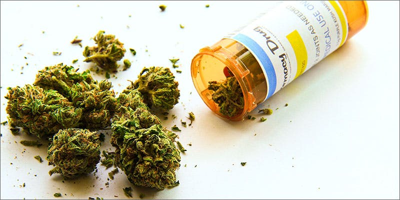 maine cannabis opioid treatment bud pharmaceutical bottle Will This State Be First To Approve Medical Marijuana To Treat Addiction?
