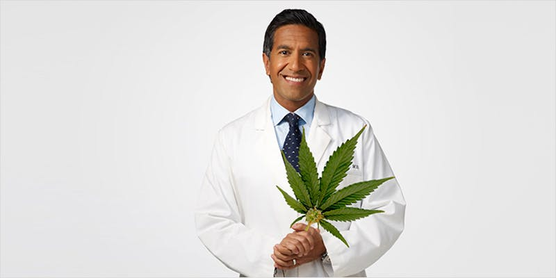 medical marijuana revolution 1 This CEO Smoked Weed For 50 Years And Supports Cannabis Legalization
