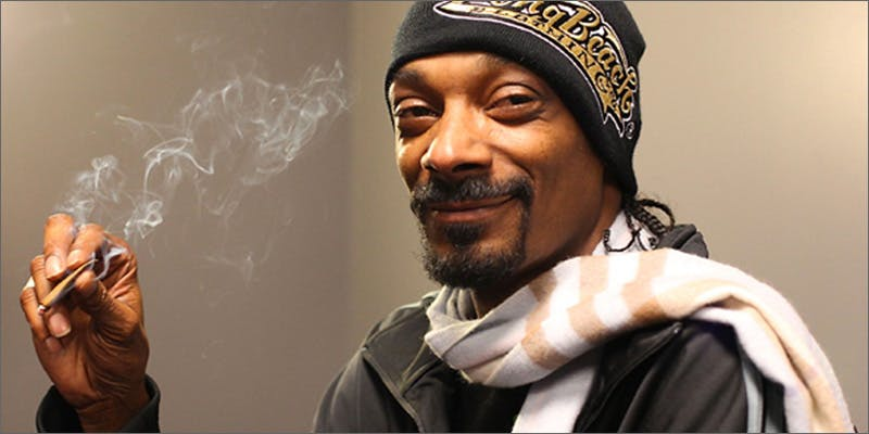 snoopfights3 Snoop: Highly Productive In Fight Against Stoner Stereotypes