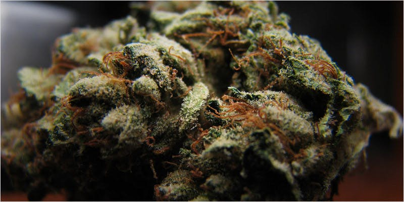 star wars strains weed 2 6 Year Old Cut From Basketball Team Because His Dad Smelled Like Weed
