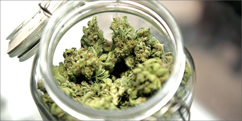 ug1 How Legalizing Cannabis In Europe Could Help Stamp Out Terrorism