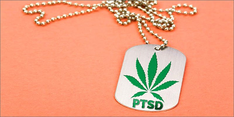 vets5 1 Believe It Or Not, Cannabis Prohibition Just Celebrated Its 80th Birthday