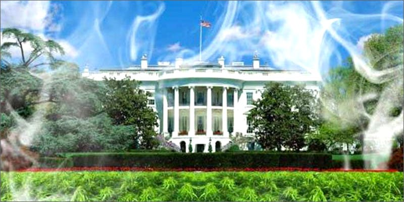 wr4 What Went Down At The Big White House Legalization Rally?