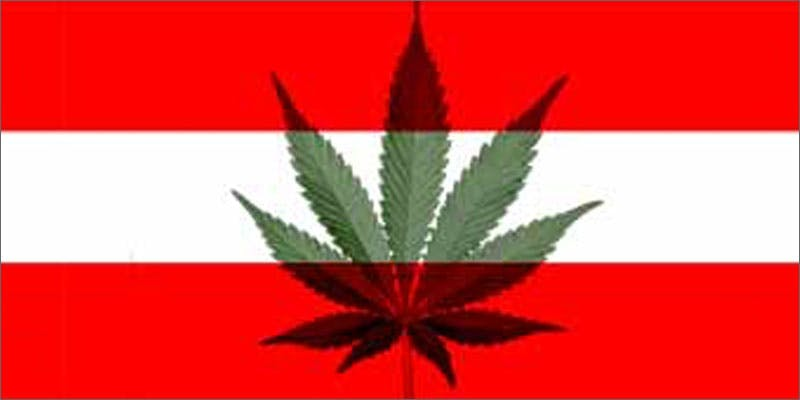 1 world march flag austria 6 Year Old Cut From Basketball Team Because His Dad Smelled Like Weed