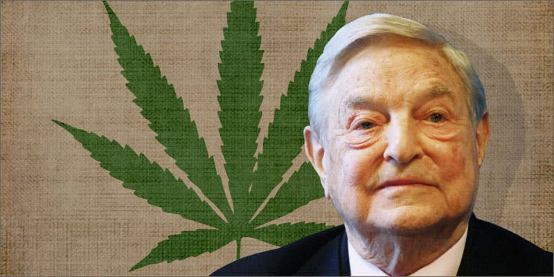 10 shocking mj consumers george soros You Need To Read Gooeys New Book About Medical Cannabis