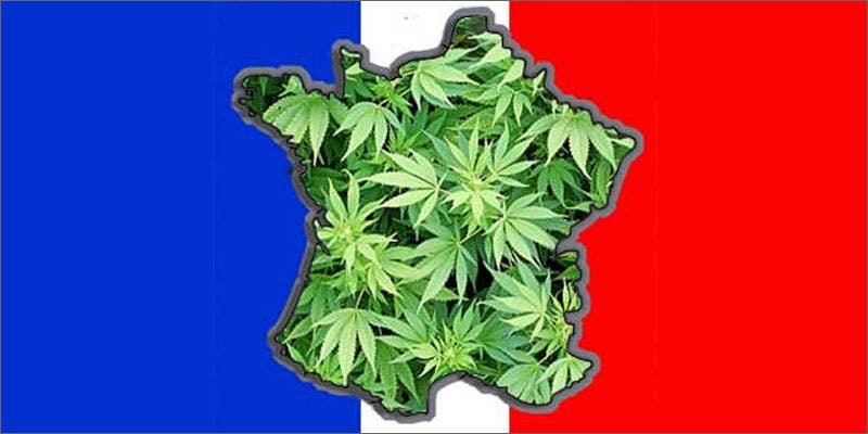 10 world march flag france 6 Year Old Cut From Basketball Team Because His Dad Smelled Like Weed