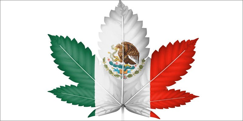 15 world march mexico Police Still Enforcing Canna Clinic Crackdowns Across Canada