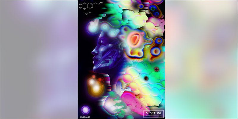 17 drug art mescaline You Need To Read Gooeys New Book About Medical Cannabis