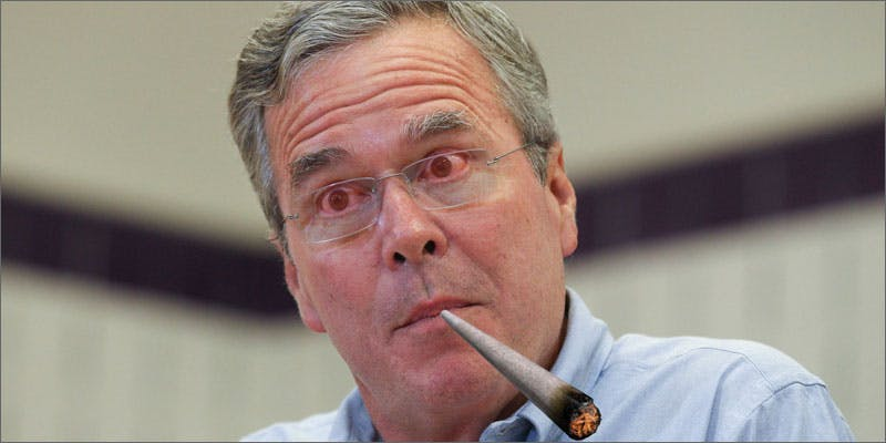 2 shocking mj consumers jeb bush You Need To Read Gooeys New Book About Medical Cannabis