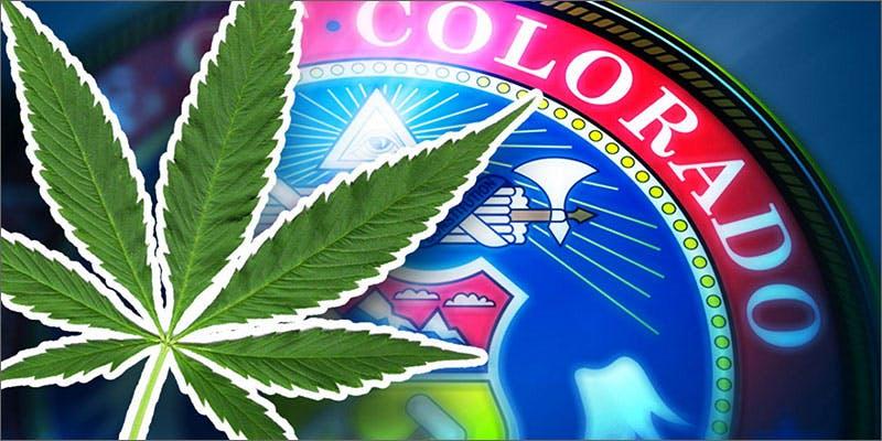 cannabis Industry Insiders