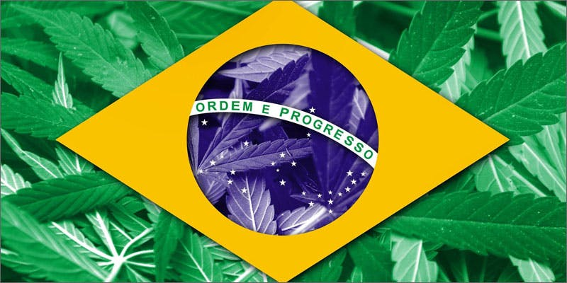 4 world march flag brazil 6 Year Old Cut From Basketball Team Because His Dad Smelled Like Weed