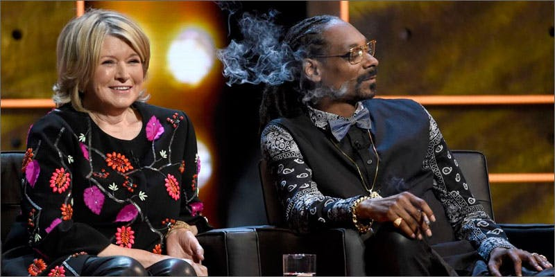 5 shocking mj consumers martha stewart You Need To Read Gooeys New Book About Medical Cannabis